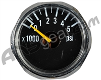 ANS 5000 PSI Gauge